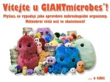 Mikroorganismy