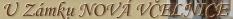Logo penzionu