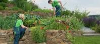 Zakladanie záhrad