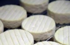 Čerství kozí sýr