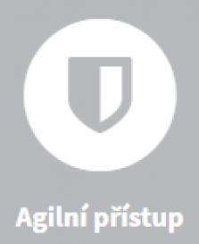 agilní přístup