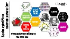 GATO Consulting