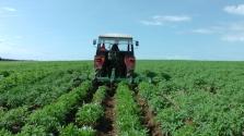 Doprava zemědělských komodit