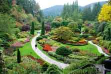 Výsadba a údržba zahrad, sečení zeleně