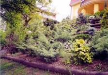 Zahradnické služby - Petr Hejnal