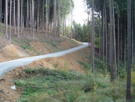 Výstavby a opravy lesních cest