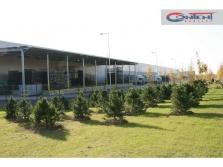 Pronájem novostavby skladových prostor 9.048 m2, Brodce