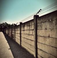 Stavba betonových plotů