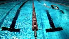 Plavecký klub
