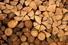 Palivové dřevo - Lukáš Janeček
