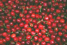 Ovoce od Zemědělské družstvo Klapý