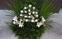Pohrebná služba AVE - pokiaľ nás oslovite cez 123dopyt - garantujeme Vám najnižšiu cenu na trhu !!!