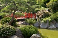 Zahradní stavby, pergoly, terasy a zpevněné plochy