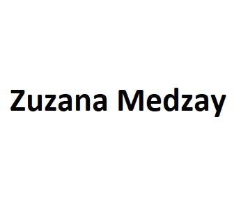 Umelecká činnosť - Zuzana Medzay s.r.o.