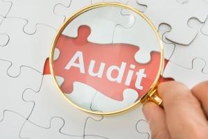 Audit účtovnej závierky - SAHESA s.r.o.