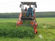 Agrotechnický výzkum