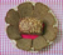 Chléb sójový