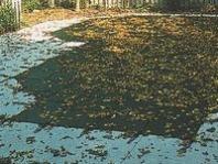 Kris-Kros krycí plachty