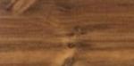 A photo of a fox