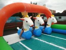 """Dostihy srandovních poníků """"Racing show"""""""