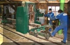 Dřevovýroba - Středisko pila