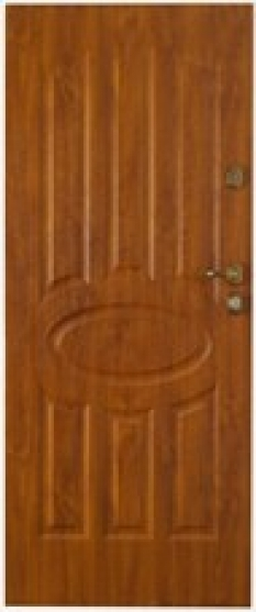 Dveře Gerda TT Max