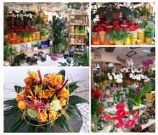 Řezané a hrnkové květiny, dárkové zboží