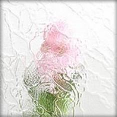 Sklo pre plastové okno ornament chinchilla biela