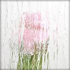 Sklo pre plastové okno ornament silvit