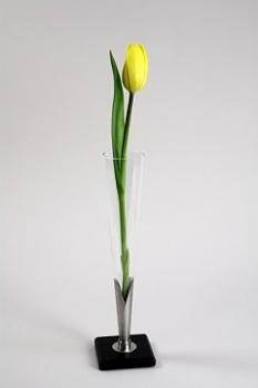 Váza V5