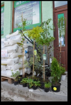 Poradenstvo v oblasti záhradníctva