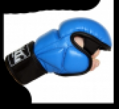 Rukavice MMA model D