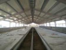 Realizujeme kompletné rekonštrukcie a modernizácie objektov pre chov ošípaných a pre chov hydiny