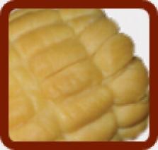 Kukurica čerstvá, údená