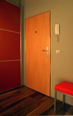 Bezpečnostní dveře|SD 101