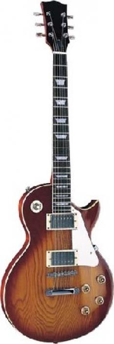 Elektrické 6 strunné kytary tvaru Les Paul