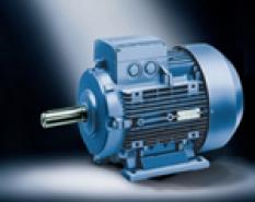 Nízkonapěťové standardní motory 1LA9