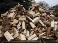 Palivové dřevo buk volně sypaný