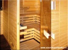 Sauny Standard