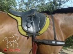 Reflexní poprsník na koně