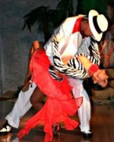 Taneční show a škola tence