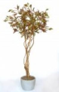 Umělý strom Acacia Tree w/Liana