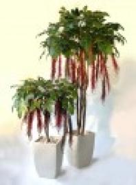 Umělý strom Amaranthus Tree (260cm)