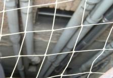 Hroty a sítě proti holubům