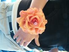 Kurzy floristiky
