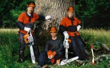Silné motorové pily pro lesnictví