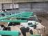 Stájová technika a technologie - Pružné hrazení Green Stall Easy
