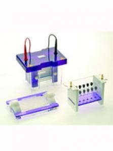 2D elektroforézy