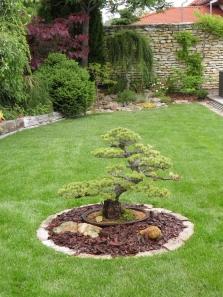 Projekce, realizace a údržba zahrad a veřejné zeleně