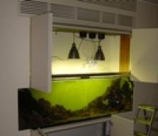 Realizace výstavních akvarijních nádrží